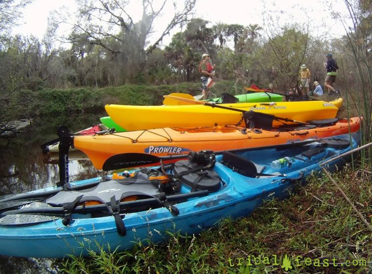 Shore lunch while kayaking on the Myakka River.