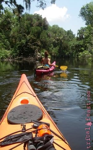 Kayaking on the Myakka River is a beautiful and otherworldly experience.
